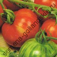 """Томат сорт """"ТИГЕРЕЛЛА"""" (Tigerella) 10 семян"""