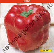 """Перец сладкий """"МАОР"""" (Maor) 10 семян"""